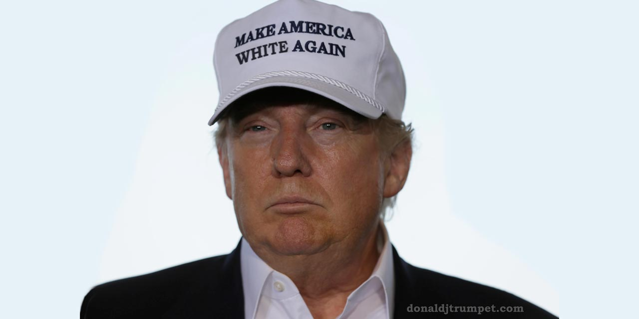 Trump with hat and slogan Make America White Again